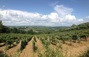 Some views of the Tuscan Hills